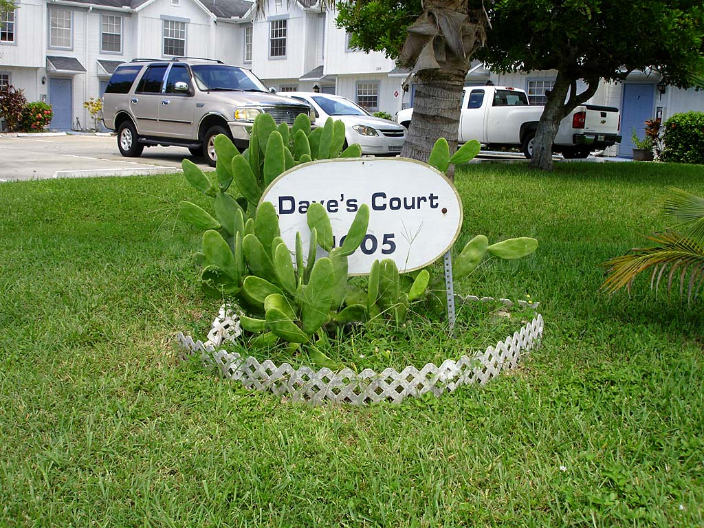 Daves Court Signage