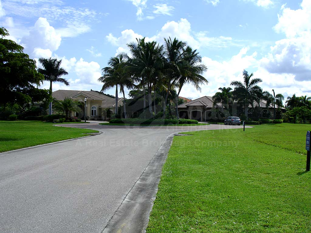 Tarpon Estates Street View