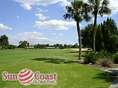 Cypress Lake Country Club Condos Golf Course