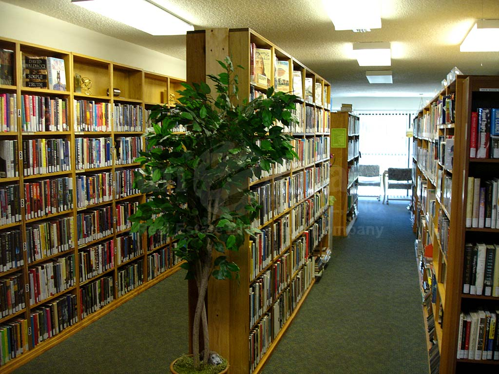 Seven Lakes Library